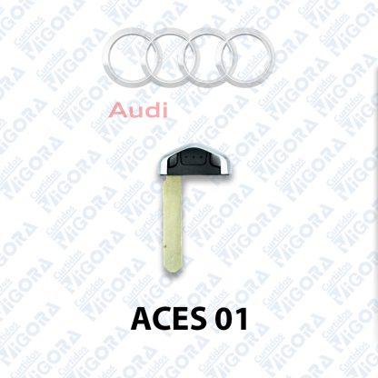 Audi-ACES01 Vigora