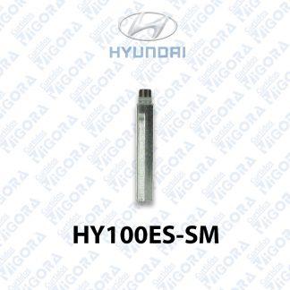 HY100ES01