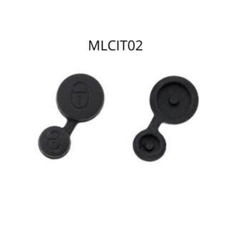 MLCIT02